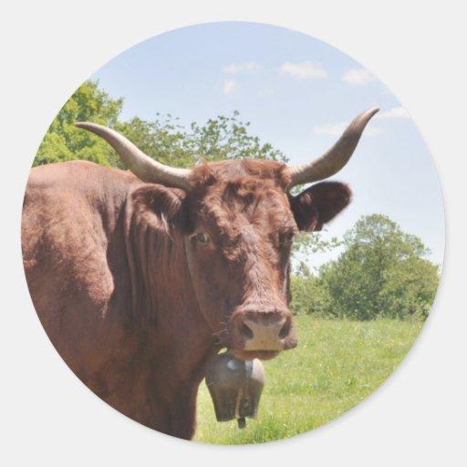 Pegatina de la vaca de Salers