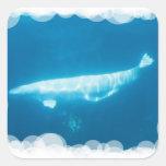 Pegatina de las ballenas de la beluga de la nataci