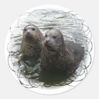 Pegatina de las crías de foca