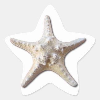 Pegatina de las estrellas de mar - blanco