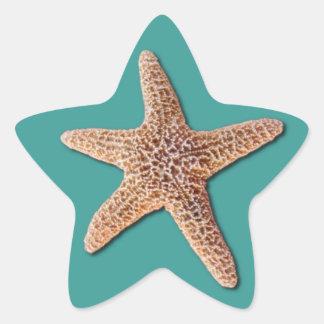 Pegatina de las estrellas de mar - turquesa