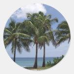 Pegatina de las palmeras