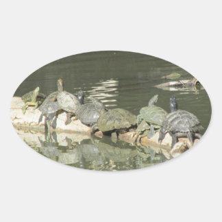 Pegatina de las tortugas
