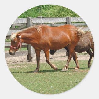 Pegatina de los caballos