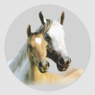 Pegatina de los compinches del caballo