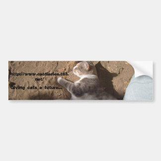 Pegatina de los gatos de la ayuda pegatina para auto