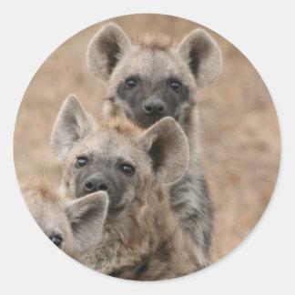 Pegatina de los Hyenas