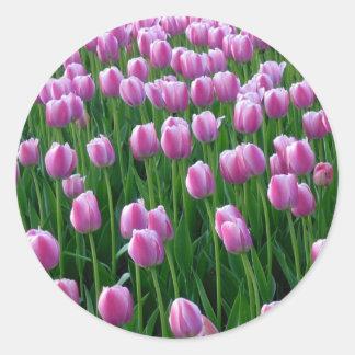 Pegatina de los tulipanes 14