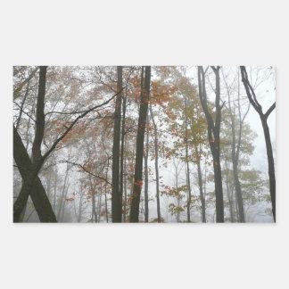 Pegatina de niebla de la caída