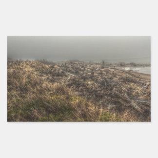 Pegatina de niebla de la playa del prado herboso