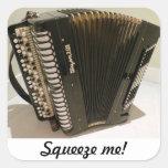 Pegatina de Squeezebox del acordeón