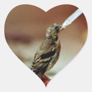 Pegatina dejado huérfano del corazón del Goldfinch