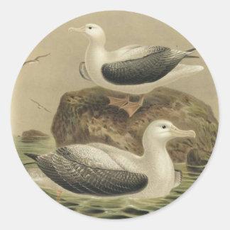 Pegatina del albatros