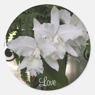 Pegatina del amor de las orquídeas