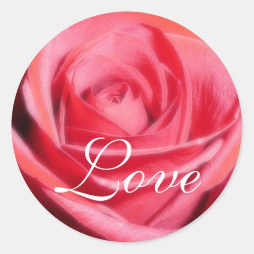 Pegatina del amor del rosa rojo