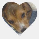 Pegatina del beagle
