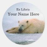 Pegatina del Bookplate del oso polar
