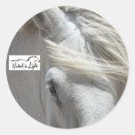 Pegatina del caballo de proyecto