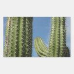Pegatina del cactus de barril