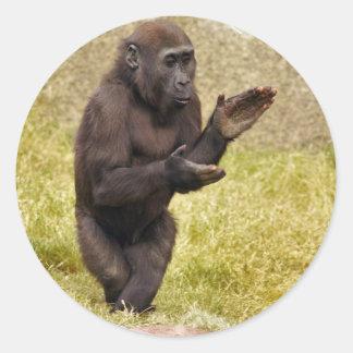 Pegatina del chimpancé