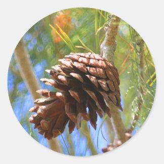 Pegatina del cono del pino