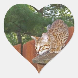 Pegatina del corazón del gato de la sabana