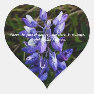 Pegatina del corazón del wildflower del Lupine