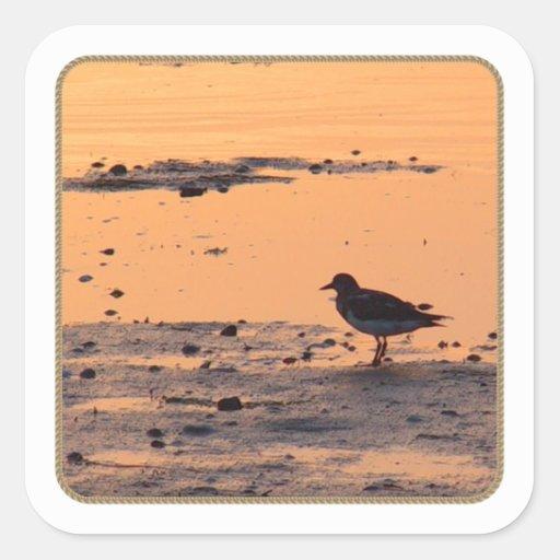 Pegatina del cuadrado de la puesta del sol del páj