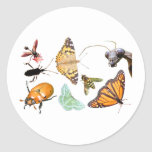 Pegatina del ~ del collage del insecto