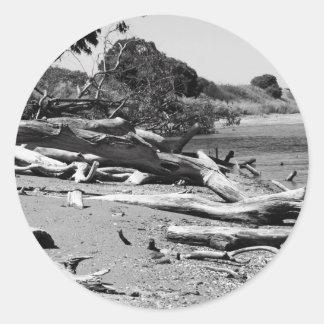 Pegatina del Driftwood