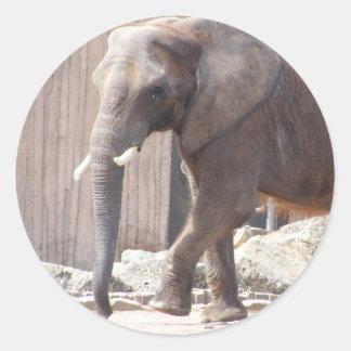 Pegatina del elefante africano