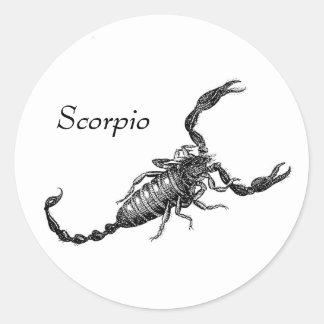 Pegatina del escorpión