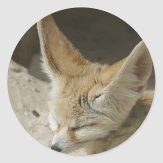Pegatina del Fox de Fennec
