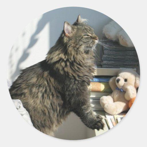 Pegatina del gato de Sun que adora