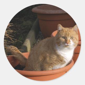 Pegatina del gato de Tom del jengibre