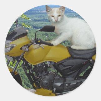 Pegatina del gato del motorista