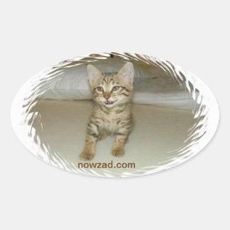 Pegatina del gato del rescate de Nowzad