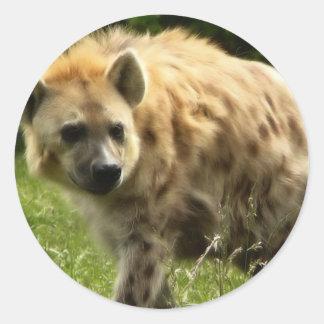 Pegatina del Hyena