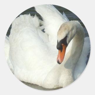Pegatina del lago swan