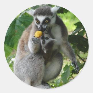 Pegatina del Lemur