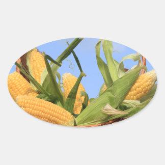 Pegatina del maíz en la mazorca