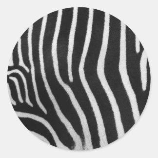 Pegatina del modelo de la raya de la cebra