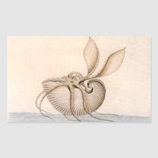 Pegatina del nautilus de papel del vintage