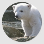 Pegatina del oso polar del bebé