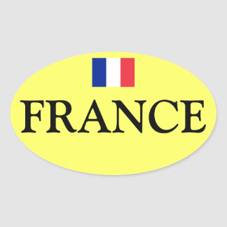 Pegatina del óvalo de la bandera de France*