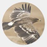 Pegatina del pájaro de Eagle del vuelo