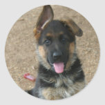 Pegatina del perrito del pastor alemán