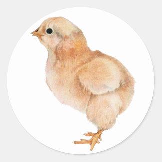 Pegatina del polluelo del bebé