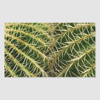 Pegatina del rectángulo del cactus