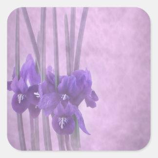 Pegatina del reticulata del iris